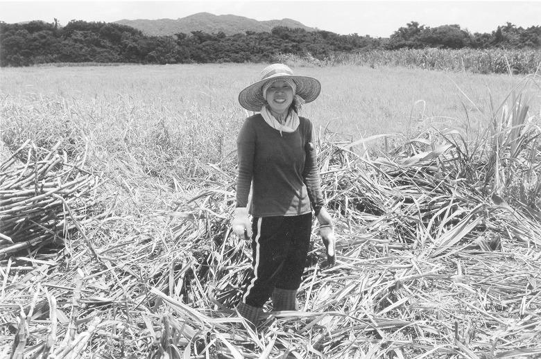 西表島のキビ刈り援農隊