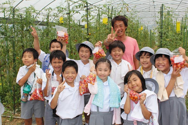 海星小学校でトマト収穫体験